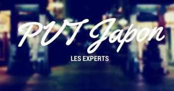 PVT JAPON experts