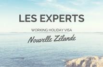 experts NZ