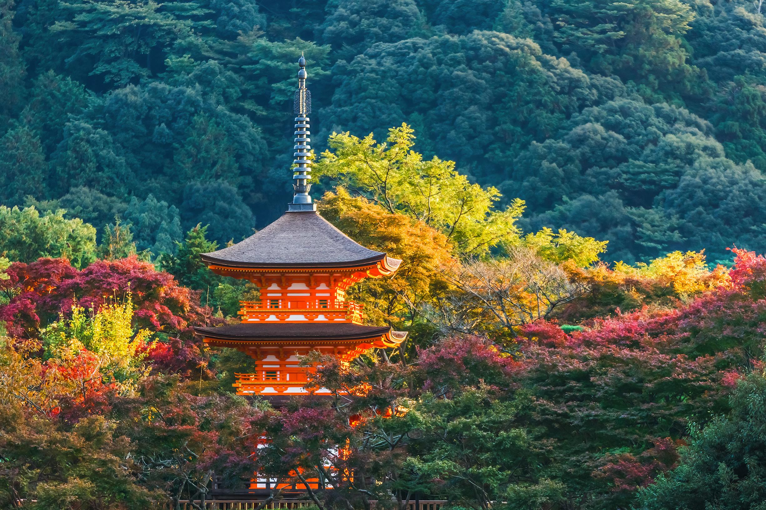 Japon : les cartes électroniques valables dans tout le réseau !