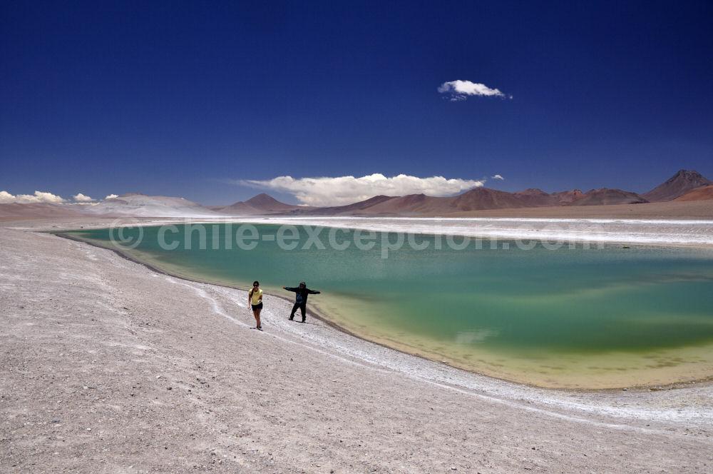 Salar de Pujsa, Atacama, Chili