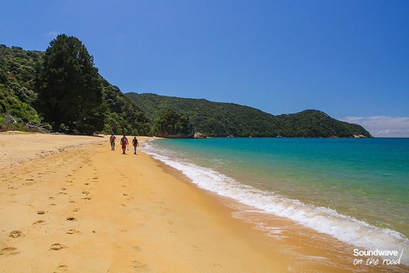 plage NZ