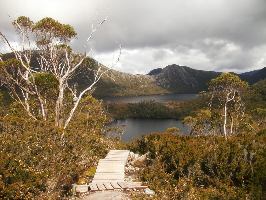© Romain Dondelinger Tasmanie Cradle Mountain 8