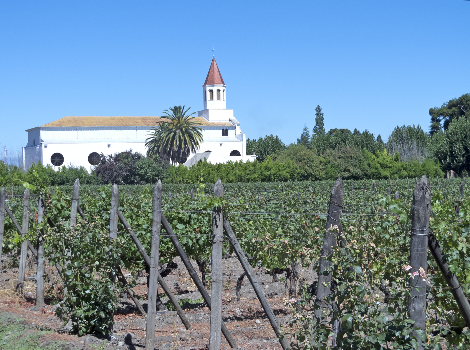 Photo d'un champs dans la campagne au chili