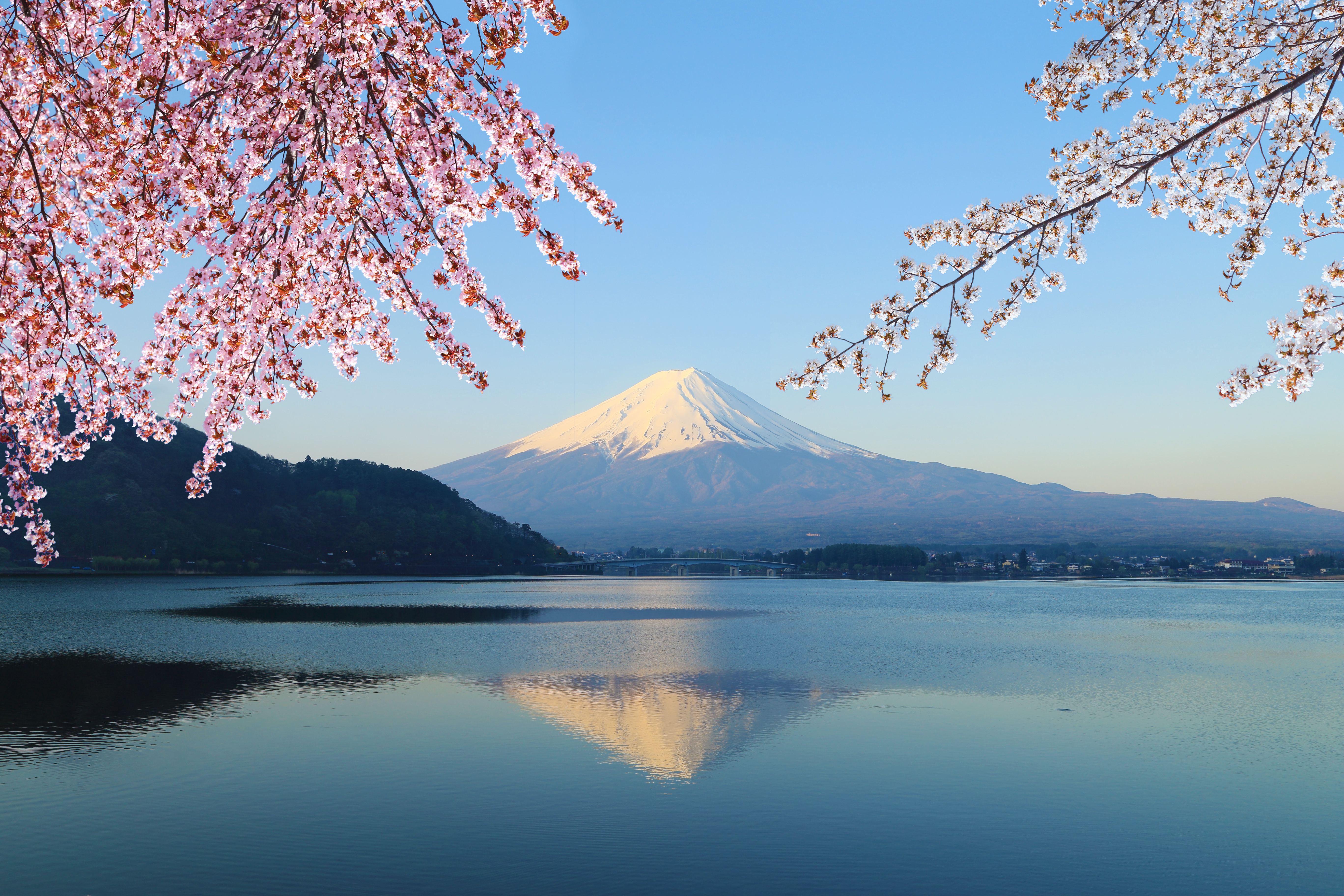Photo du mont Fuji, incontournable pour un WHV Japon