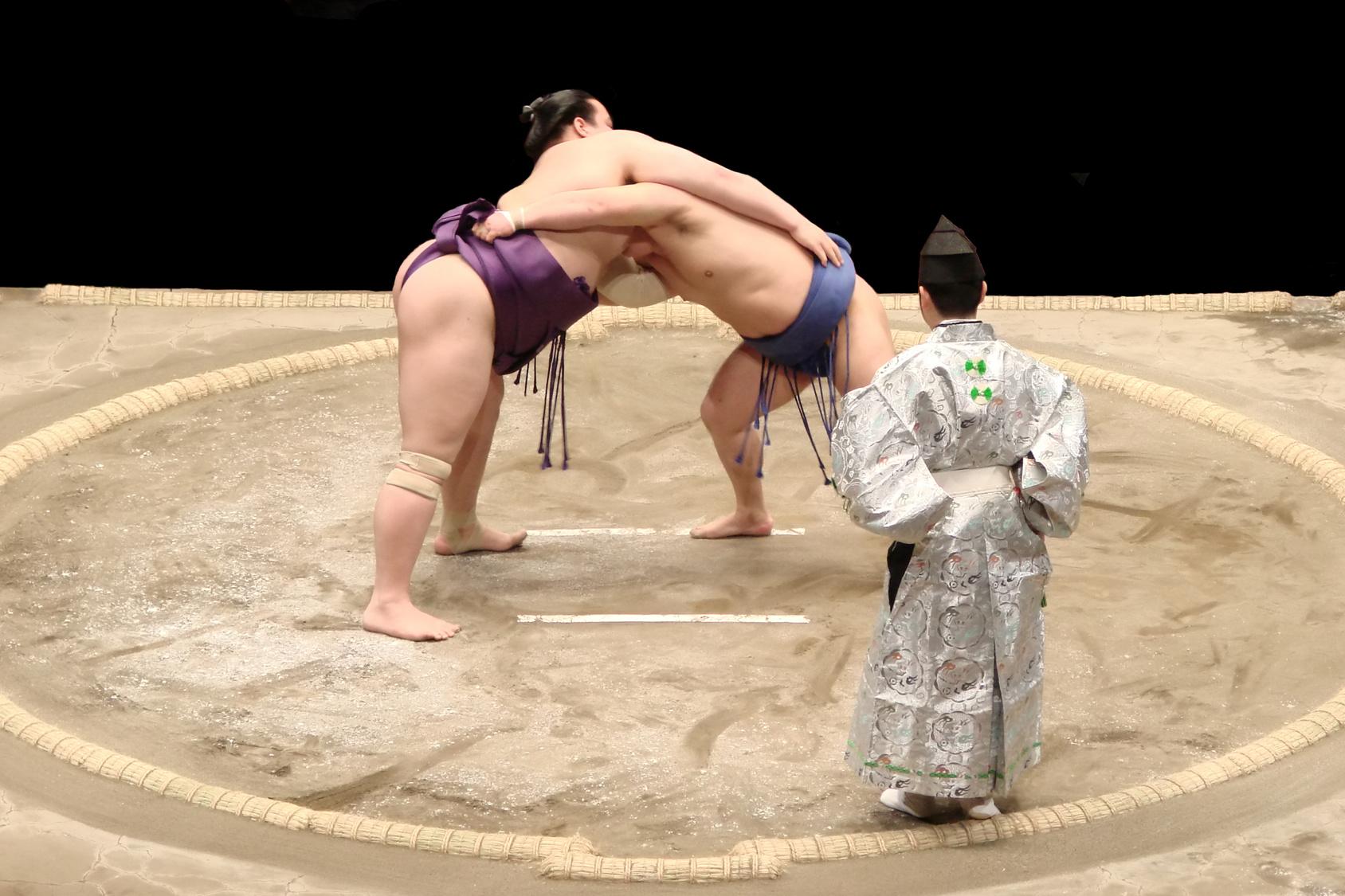 Photo d'un combat de sumo, un incontournable en WHV Japon