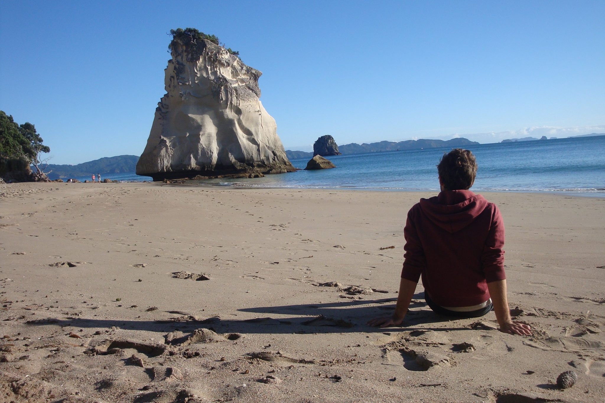 cathedrale cove nz road trip