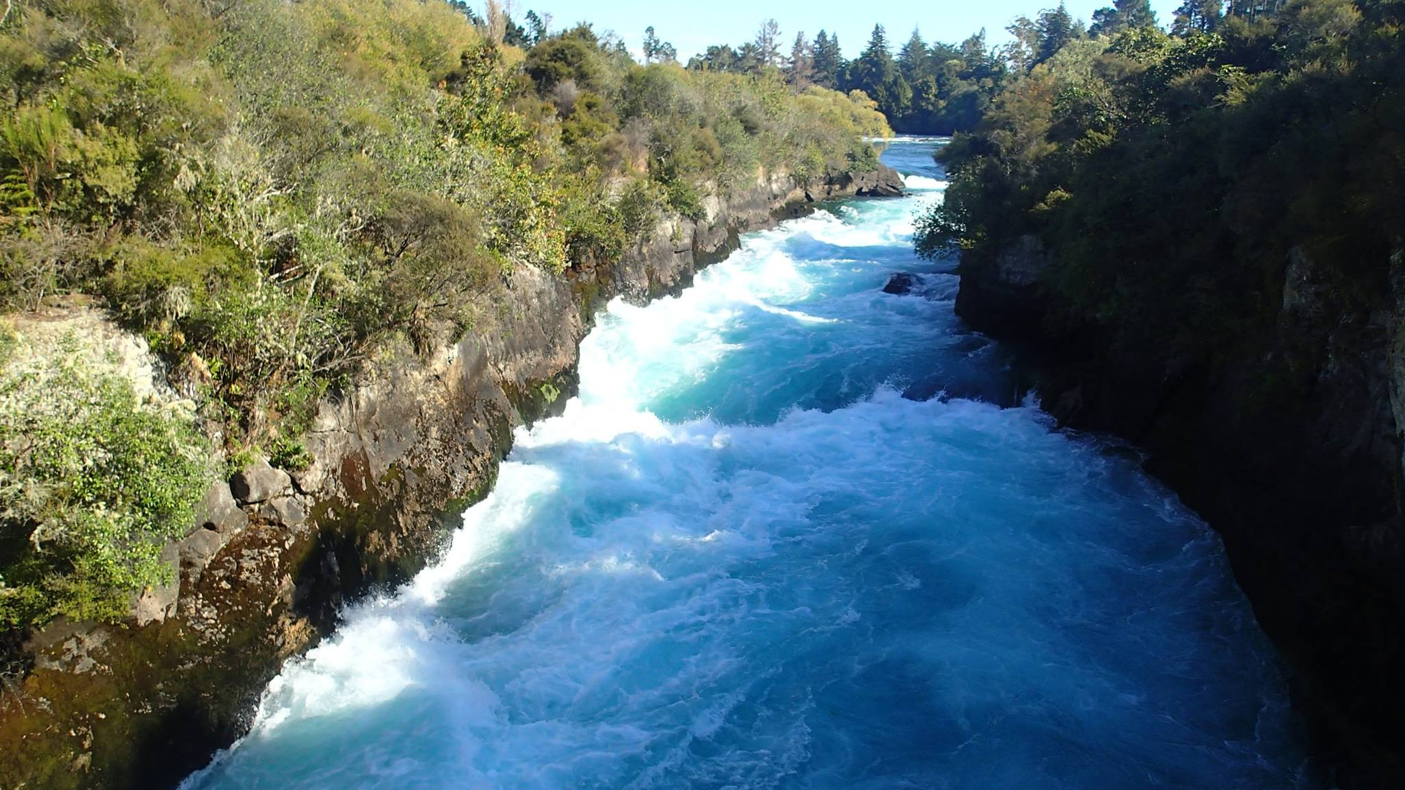 hamurana springs road trip nz