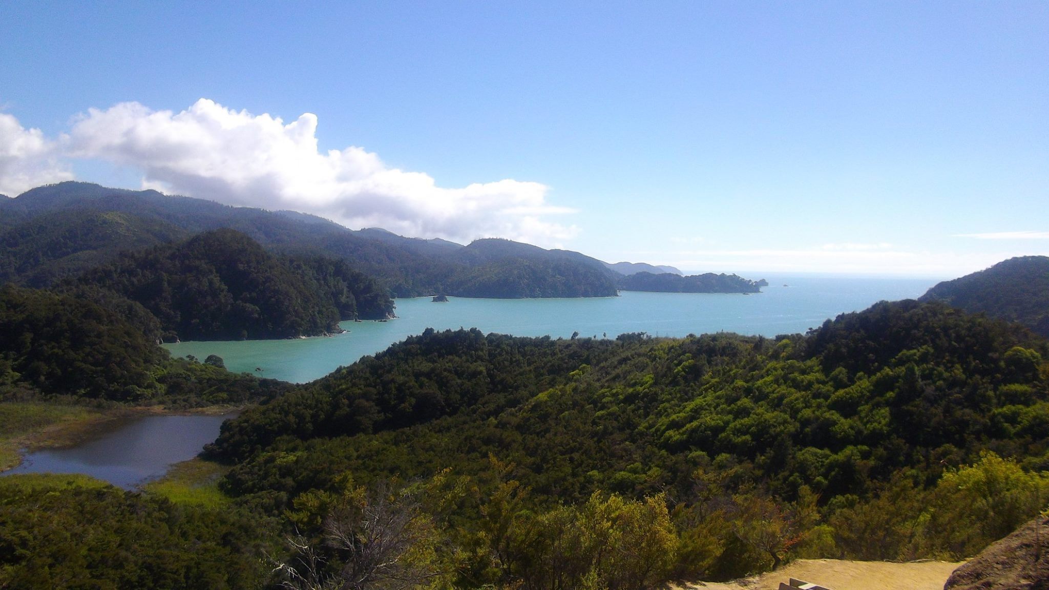 nz-road trip abel tasman national park