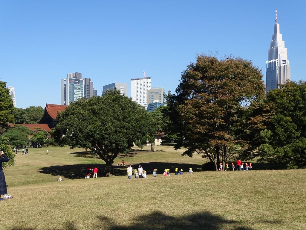 Parc Tokyo Japon