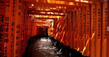 arche-japon