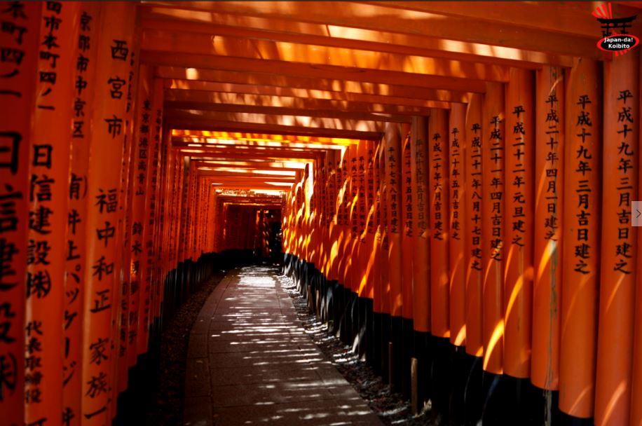 Claire-Marie du blog Japan-da ! Koibito dévoile sa passion pour le Japon
