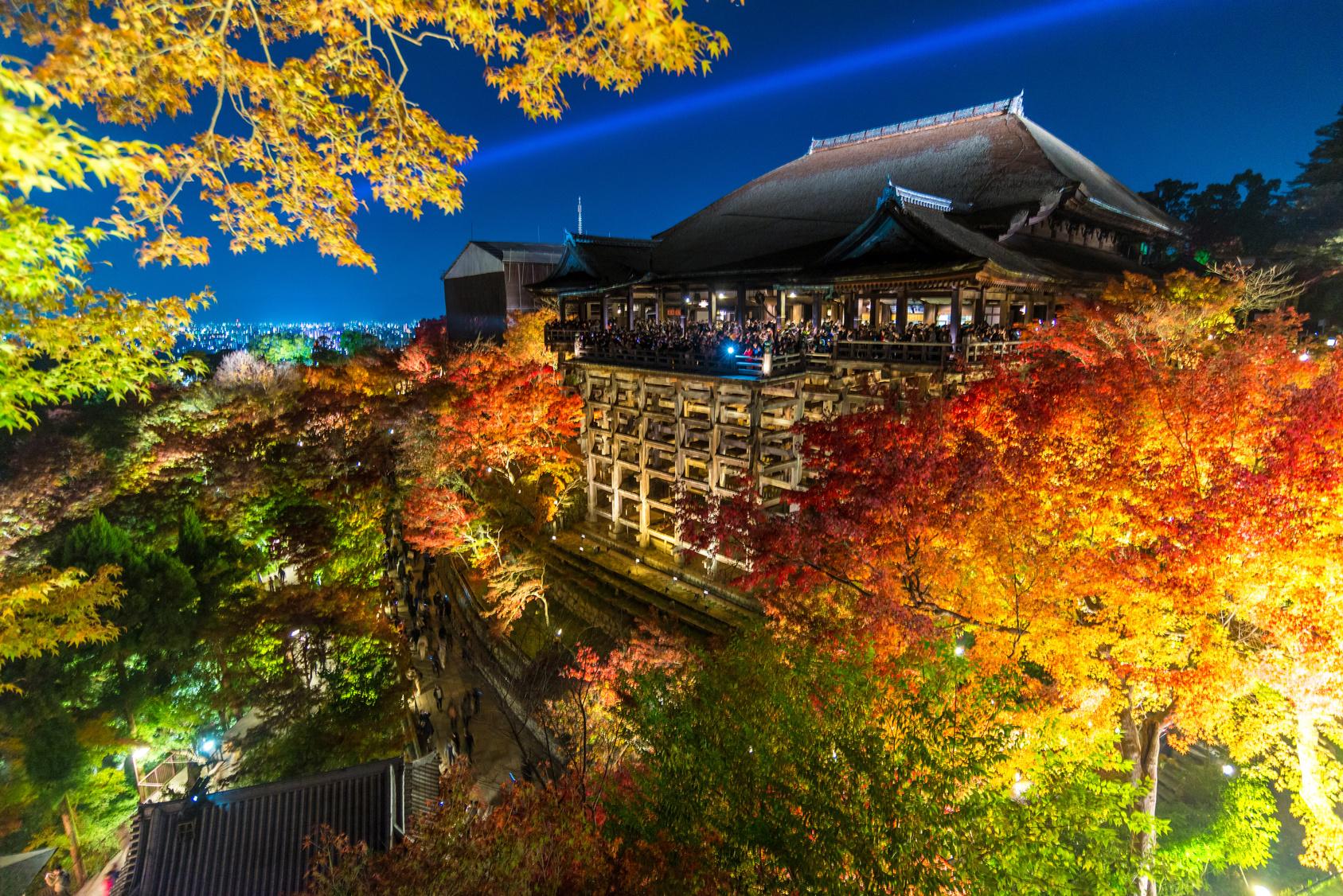 boite de nuit au japon
