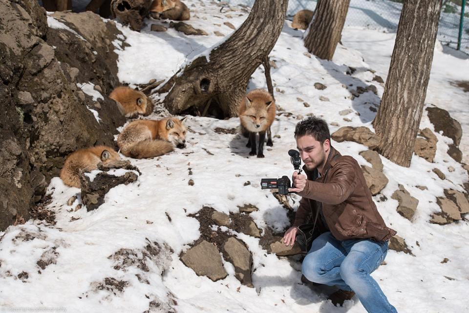 ichiban nature film