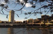 Aux alentours de Brisbane, on trouve de quoi faire du Woofing en Australie