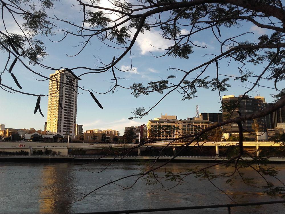 Aux alentours de Brisbane, on trouve de quoi faire du Wwoofing en Australie