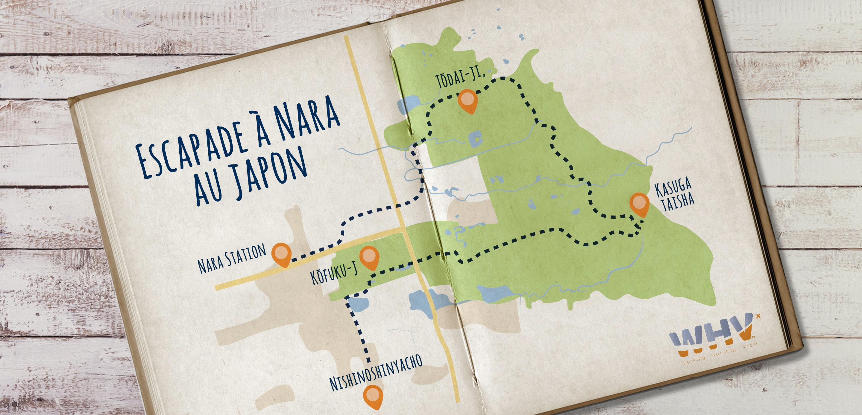 guide pour visiter nara au japon