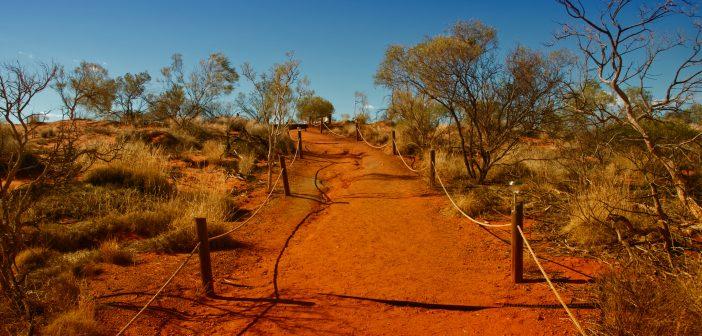 5  comptes instagram à suivre si vous êtes accro à l'Australie