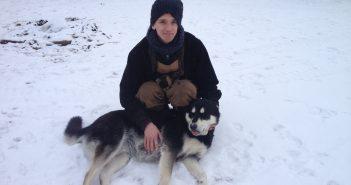 Un bénévolat au Canada avec les chiens de traineaux