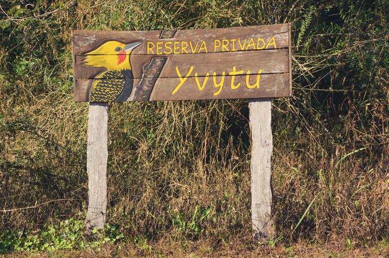 volontariat dans la réserve Yvytu