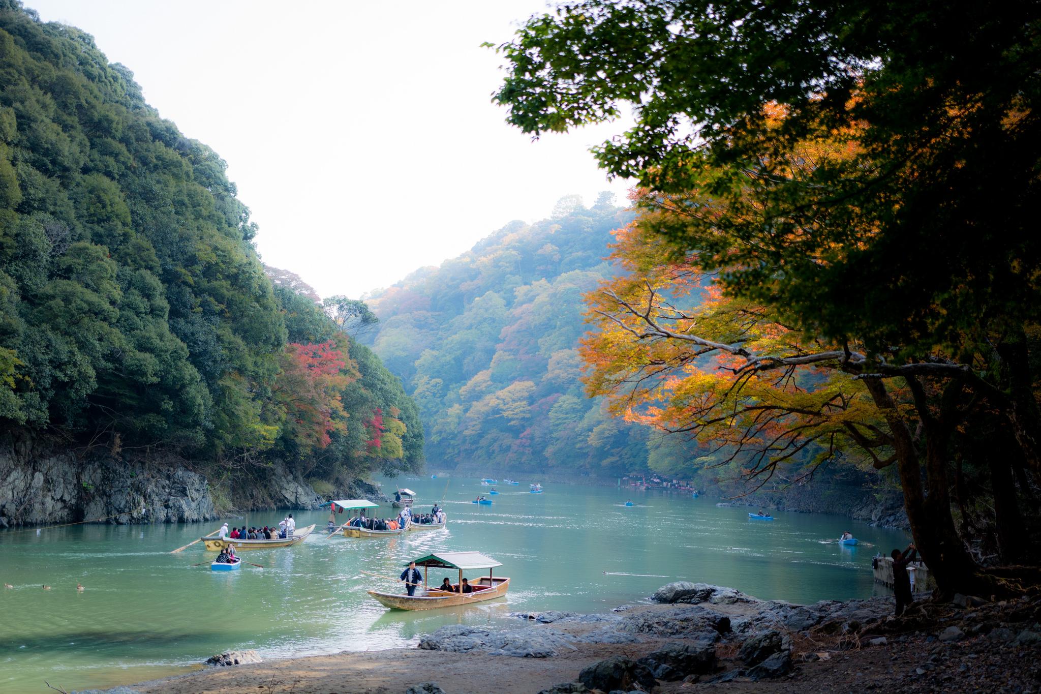 Voyage dans la bambouseraie d'Arashiyama