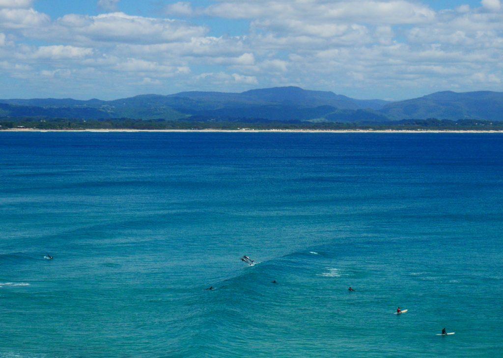 faire du surf avec des dauphins en Australie