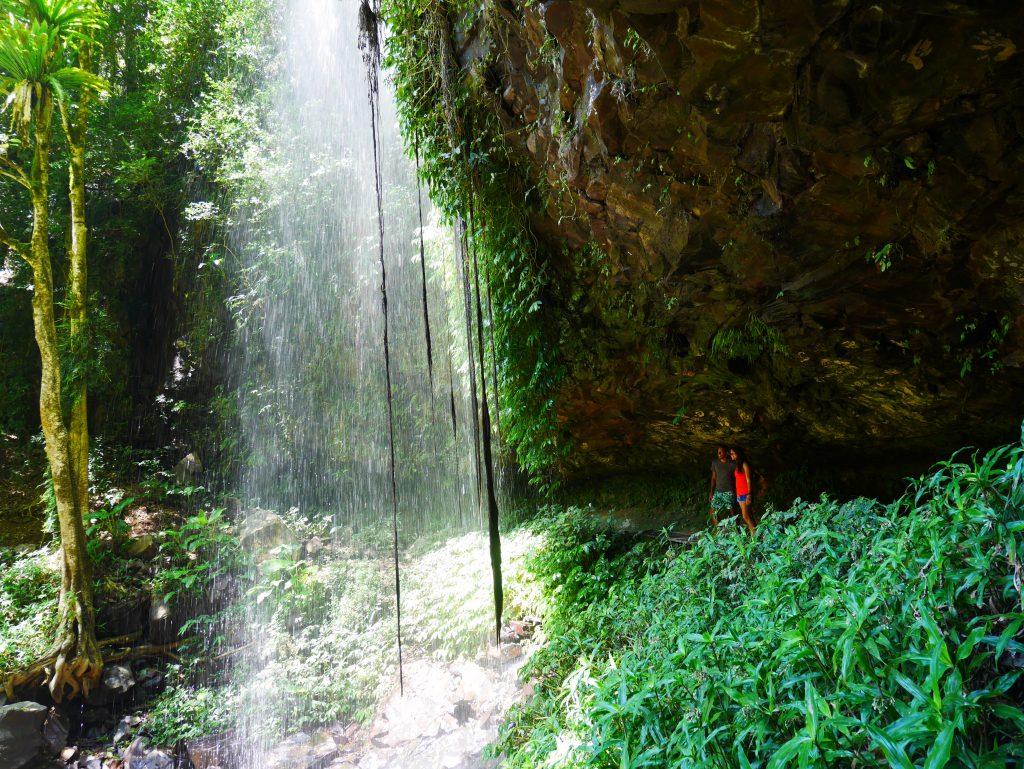 Crystal Shower Falls à Dorrigo
