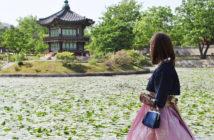 PVT Corée du Sud : conseils et témoignages