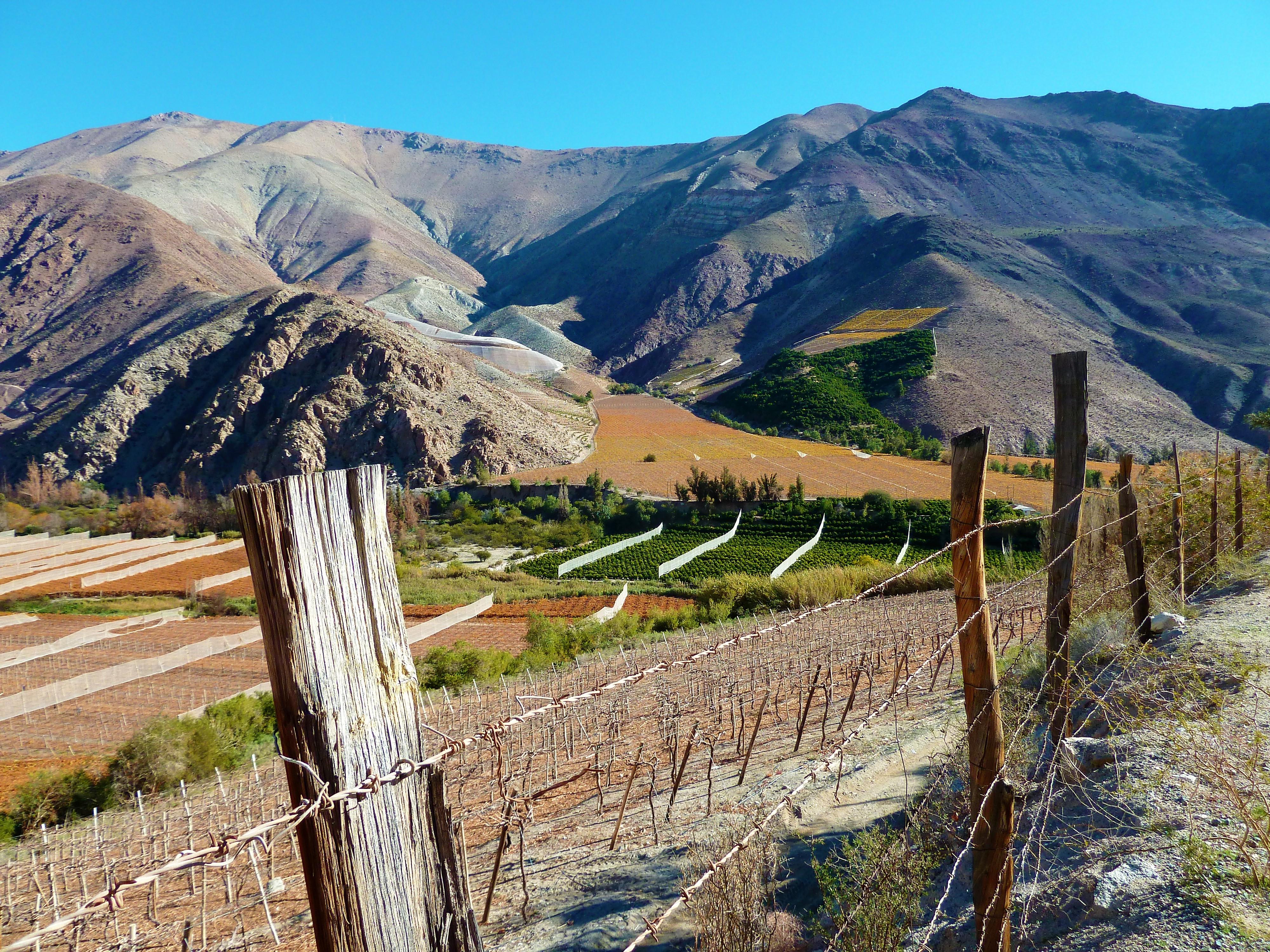 Un road-trip dans la vallée de l'Elqui, par Clémence et Nicolas