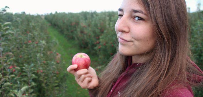 Pour prolonger son WHV, Maya a travaillé 88 jours dans les fermes