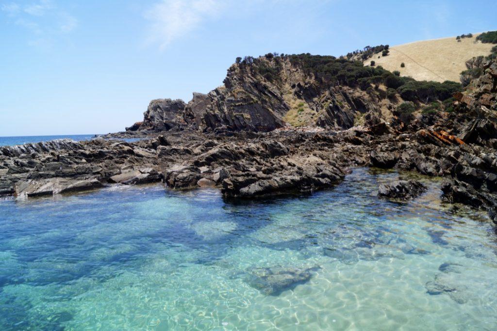 visiter Kangarou Island en Australie