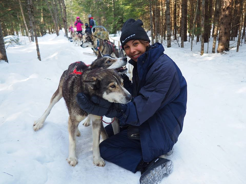 devenir guide musher au Quebec
