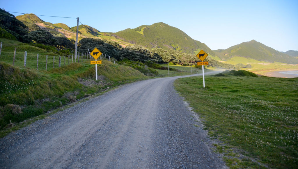 comment louer un véhicule en Nouvelle-Zélande ?