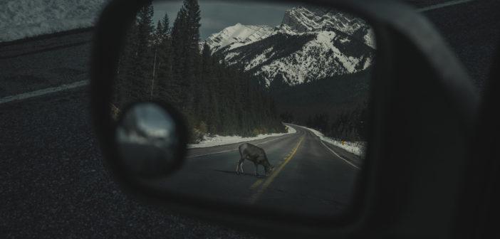 Road-trip de Montréal à Vancouver : 7000km sur les routes du nord canadien