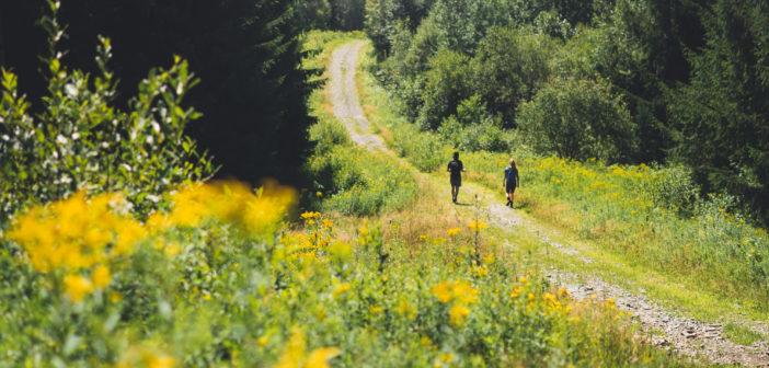 Randonnez au Québec avec l'équipe de Picbois Trekking