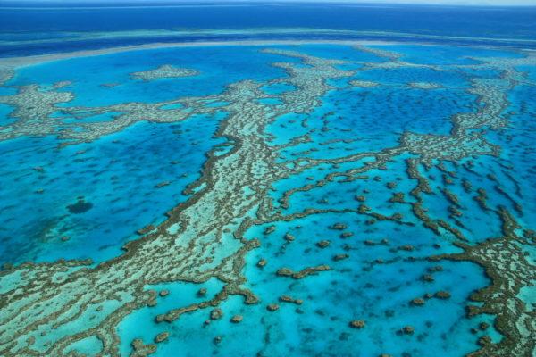 Covid-19 : Impossible de vous rendre ou de rester en PVT Australie ? Les autorités réagissent !
